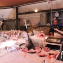 Sicily Tour 2015 - Fish Market in Catania