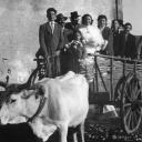 Our Nonne's Italian Weddings