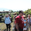 Sorrento Tour 2015  - Lunch at the Vesuvius Winery